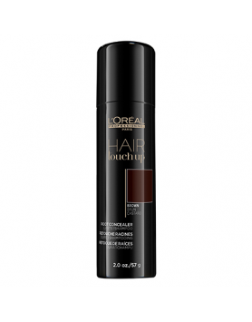 L'Oréal Professionnel Hair Touch Up Brown 2 oz